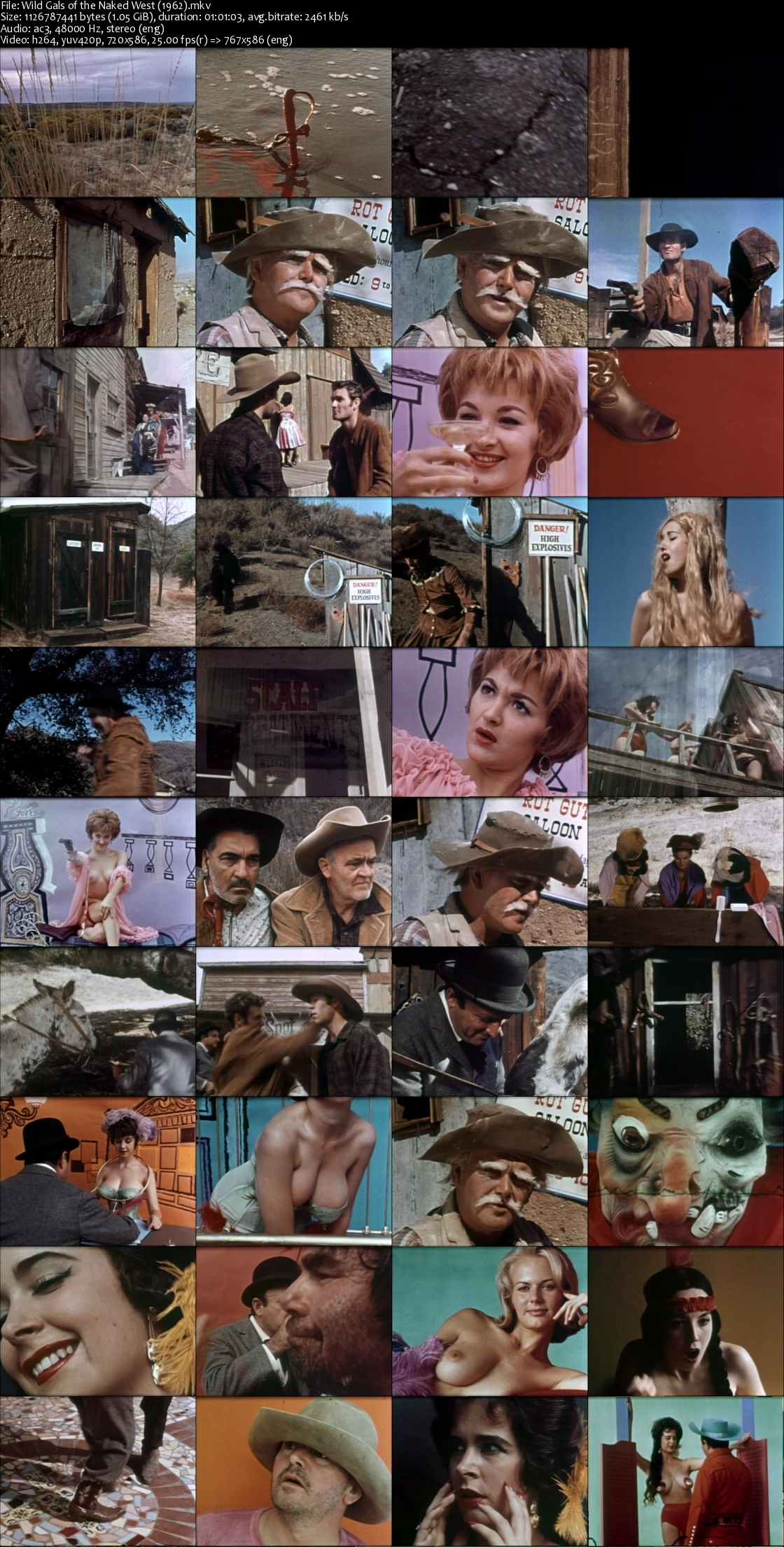 Wild Gals of the Naked West (1962) Dvdrip [1.05Gb]