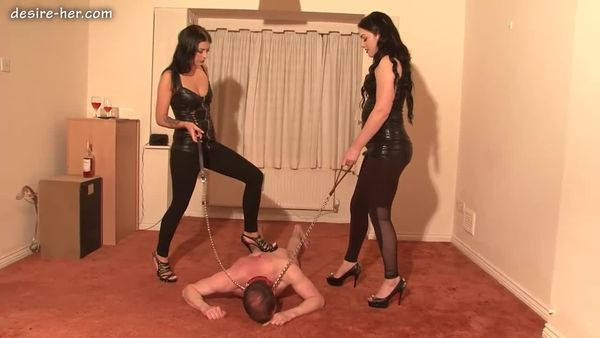 Desire-Her - Training The D0g Part 1