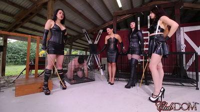 Clubdom - Michelle, Natalya, Isobel, & Lydia Caning