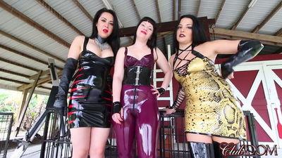 Clubdom - Michelle, Natalya, Isobel & POV 2