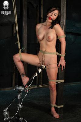 Fantasy Damsels - The Bound Belly Dancer - Melissa Jacobs