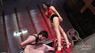 Femdom Empire – Jasmine Mendez – Amazon Legs Destroy Tiny Balls
