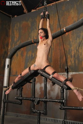 Strict Restraint - Split and Bent - Caddy Compson