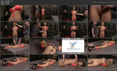 Society SM - Molly Mae - Beast Punishing Beauty