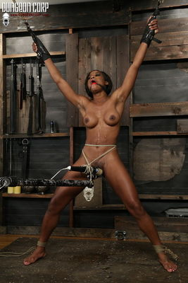 Society SM - The Newbie Toy - Mya Mays