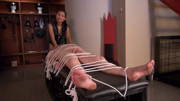 CBT and Milking