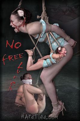 Hardtied - Apr 8, 2015: No Free Lunch   Bonnie Day   Jack Hammer