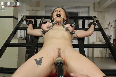 Dungeon Corp - Hard core Beauty on Bottom - Molly Jane
