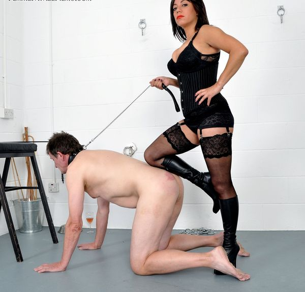 new 31.05.2015 Disciplined by Seductress complete