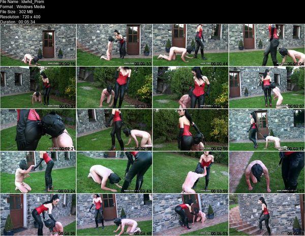 Chateau-cuir - Leather Domina Walks human Dog