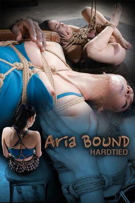 Hardtied - Dec 16, 2015: Aria Bound | Aria Alexander | Jack Hammer
