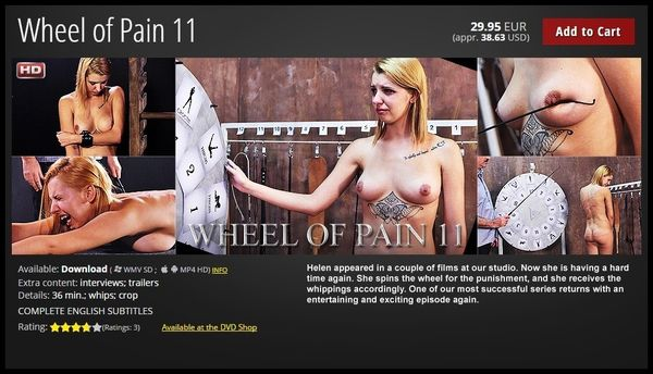 WHEEL OF PAIN 11
