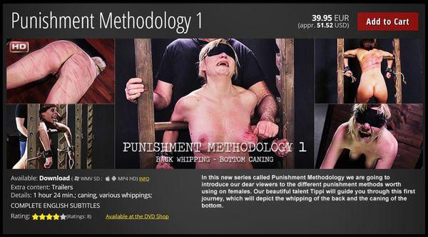(04.03.2016) PUNISHMENT METHODOLOGY 1