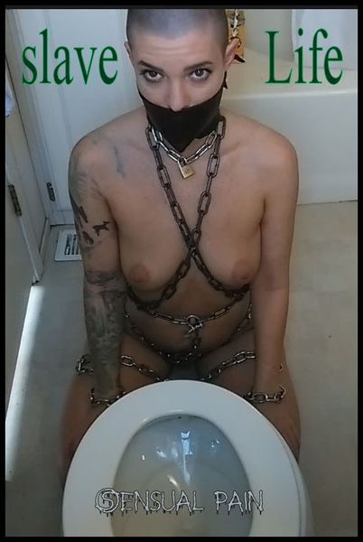 (23.07.2016) slave Life – Cleaning the Toilet